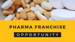 Zedip Formulations – Best Pcd Pharma Franchise Company in Ahmedabad