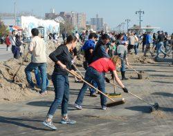 An Experienced Volunteer & Social Helper