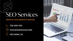 Affordable SEO Services for Every Business