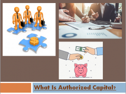 Authorized Capital Or Shares | Franklin I. Ogele
