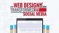 Best Social Media Web Development Company India And USA