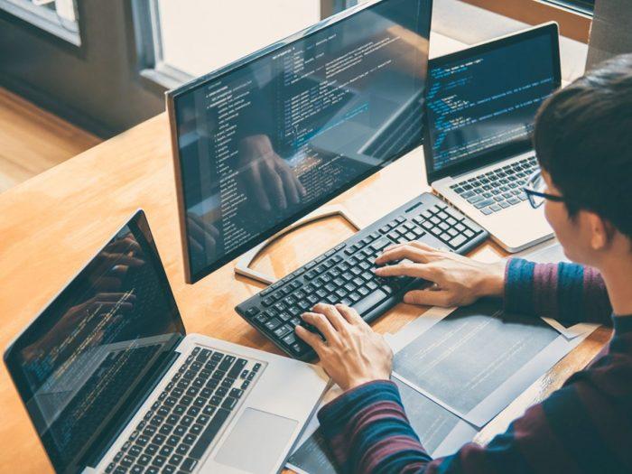 Florida Web Development | Web Design Company Florida | Digirabbits