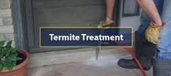 Tips in Hiring Termite Control Melbourne Company