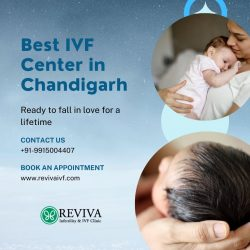 Best IVF Center in Chandigarh