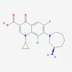 besifloxacin