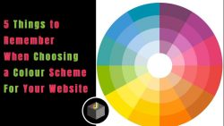 How to Find The Best Colour Schema For Your Website?