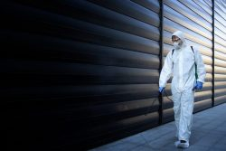 Commercial Pest Services in Your Answer to Serve Pest Infestation