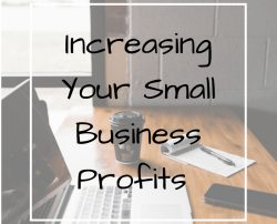 Upgrade your Business & Earn Maximum Profits – Ferhan Patel