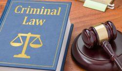 Criminal Law | Franklin I. Ogele