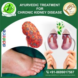 Herbal Remedies for CKD