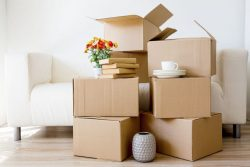 Hire For Successful Moving : Blue Beaver Movers