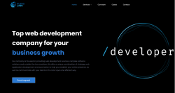 Looking Web application development company?