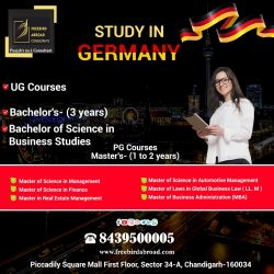 Higher Education In Germany