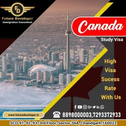 Study In Canada. 👉 For High, Visa Success Rate Call Us.