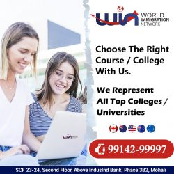 Study Abroad In Top Ranking College / Universities