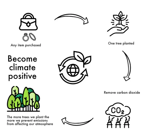 Pamisva – A Greener Economy