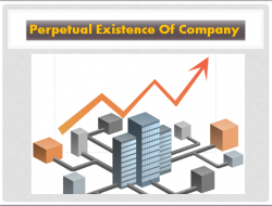 Perpetual Existence Of Company | Franklin I. Ogele