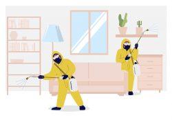 Pest Control Maple Ridge