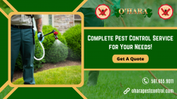 Protect Your Health & Property From Unwanted Pests!