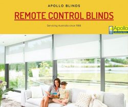 Remote Control Blinds