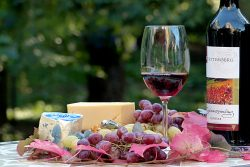 Chastity Valdes Wine Blogs That Readers Will Love