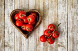 GROWING TOMATOES FROM PLANTING TO HARVEST