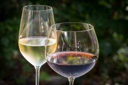 Chastity Valdes Wine Blogs
