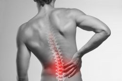 Harvard Trained Back Pain Specialist