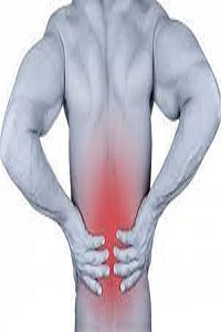 Harvard Trained are Back Pain in the Specialist