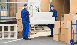 Need furniture removals Cape Town