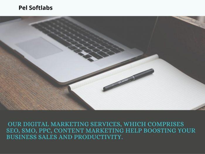 Pel Softlabs Pvt Ltd – IT Services