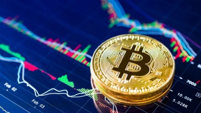 Looking For Cryptocurrency Expert