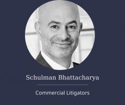 Schulman Bhattacharya | Commercial Litigator