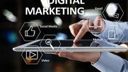 Grow Your Business With Digital Marketing Expert