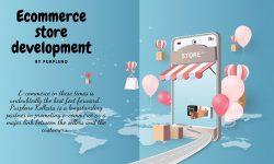 Ecommerce development store