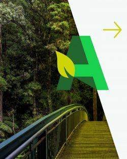 Arborists Report Auckland