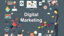 Bridge City Firm – Best Digital Marketing Services