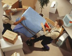 Searching for movers for hire Cape Town