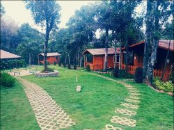 Homestays in Sakleshpur   wildvalley.in