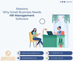 Why Small Business Needs HR Management Software ?