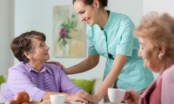 Well-Organized Nursing Home In Ireland