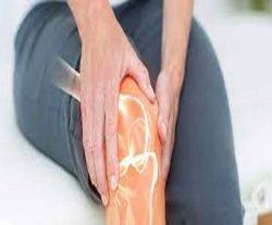 Harvard Trained in Knee Pain Doctors