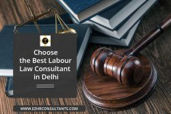 Choose the Best Labour Law Consultants