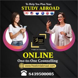 Get Online Counselling, for Study Abroad