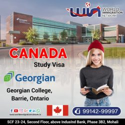 Canada Study Visa Is The Best Option