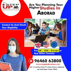 Are You Planning Higher Studies In Abroad