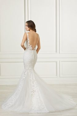 Adrianna Papell Beautiful All Over Lace Gown