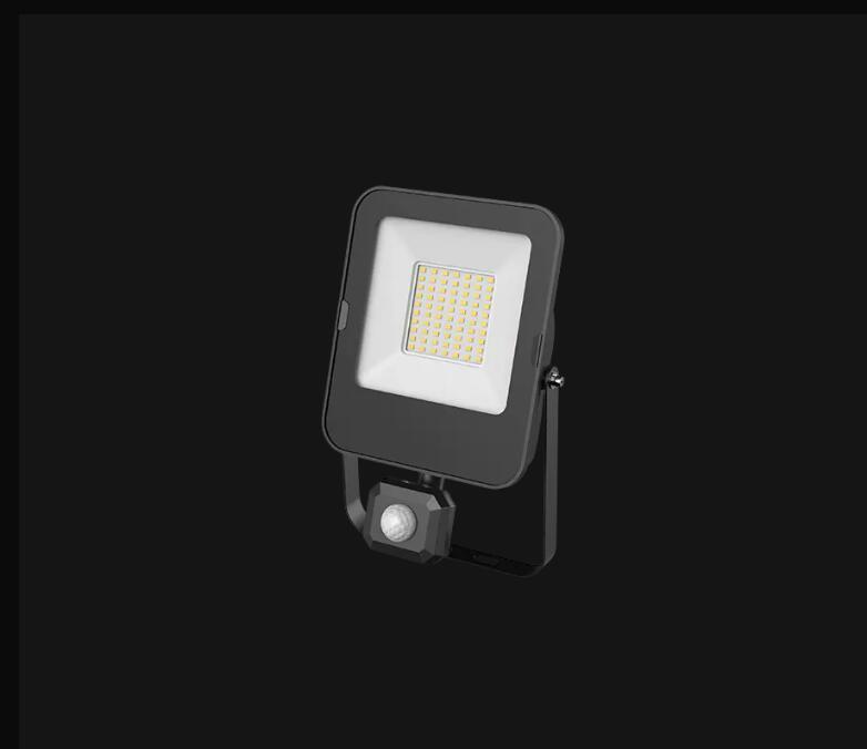 3050S-FLOOD LIGHT 50W