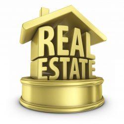 Real Estate Expert- Cindy Ughanze