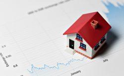Real Estate Market- Cindy Ughanze